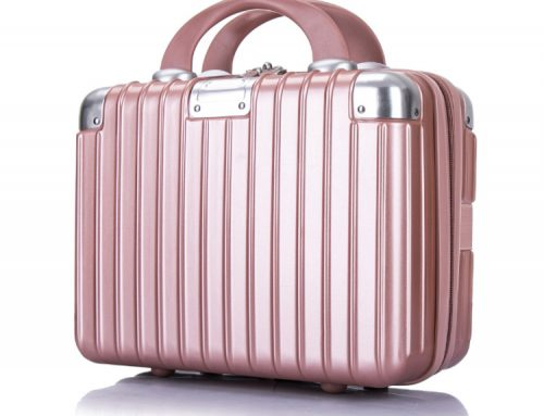 14 inches Beauty Case